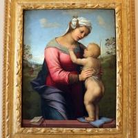 Franciabigio, madonna col bambino e san giovannino, 1510-13 ca - Sailko - Bologna (BO)
