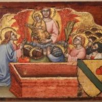 Simone dei crocifissi, sette episodi della vita di maria1396-98 ca, da polittico cospi in s. petronio 08 - Sailko - Bologna (BO)