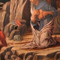 Marco zoppo, san girolamo penitente, 1470 ca., 04 - Sailko - Bologna (BO)