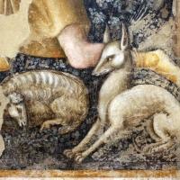 Vitale da bologna, annunciazione, natività, sogno di maria e guarigione miracolosa, 1340-45 ca., da oratorio di mezzaratta 09 cane - Sailko - Bologna (BO)