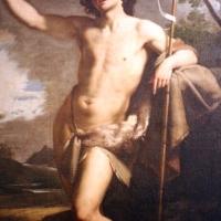 Michele desubleo, san giovanni battista predicante, 1650 ca., 02 - Sailko - Bologna (BO)