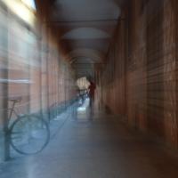 Portici di corsa - Alfredo Di Maria - Bologna (BO)