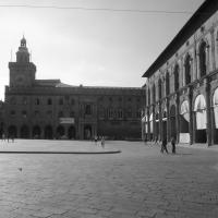 (Bologna) Palazzo d'Accursio - Silverfox1977 - Bologna (BO)