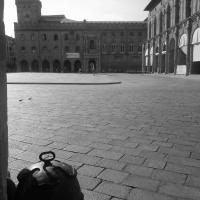 Palazzo D'Accursio (BO) - Silverfox1977 - Bologna (BO)