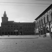 Palazzo Accursio (Bologna) - Silverfox1977 - Bologna (BO)