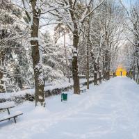 Villa delle Rose sotto la neve (2) - Ugeorge - Bologna (BO)