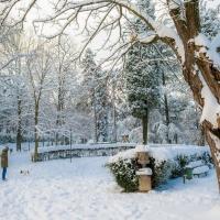 Villa delle Rose sotto la neve (3) - Ugeorge - Bologna (BO)