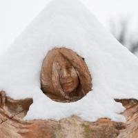 Dettaglio dopo abbondante nevicata - Ugeorge - Bologna (BO)