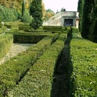 Dettaglio del parco - Lelleri - Bologna (BO)