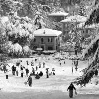 Parco di Villa Spada con la neve - Ugeorge - Bologna (BO)