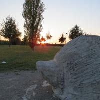 Parco Lupicchio - il porcospino - DONAT - Castel Maggiore (BO)