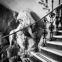 La statua in gesso del leone - Paolo Cortesi - Castello d'Argile (BO)