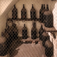 Imola, palazzo tozzoni, cantine, bottiglioni di vino dal 1845 al 1910, 03 - Sailko - Imola (BO)