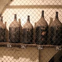 Imola, palazzo tozzoni, cantine, bottiglioni di vino dal 1845 al 1910, 01 - Sailko - Imola (BO)