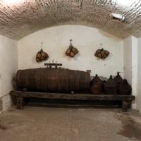 Imola, palazzo tozzoni, cantine, botte e fiaschi - Sailko - Imola (BO)