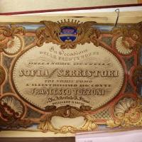 Imola, palazzo tozzoni, album per il matrimonio di francesco tozzoni con sofia serristori, xix secolo - Sailko - Imola (BO)