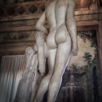 immagine da Apollino di Canova all'interno della Sala Boschereccia delle Collezioni comunali d'arte