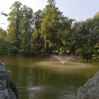 Giardini Margherita lago - Francesca Monti - Bologna (BO)