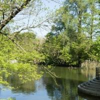 immagine da Giardini Margherita
