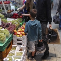 I BAMBINI FRA FRUTTA E VERDURA - Scheletropaffuto - Bologna (BO)