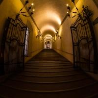 Scalinata Palazzo D'Accursio - Marco Menegatti - Bologna (BO)