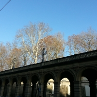 Cielo di primavera ai Giardini della Montagnola - Elisa frizza - Bologna (BO)