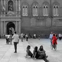 Piazza maggiore con vista palazzo d,accursio - Anita1malina - Bologna (BO)