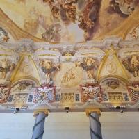 Palazzo Pepoli Campogrande - Salone d'onore con il naso all'insù - Opi1010 - Bologna (BO)