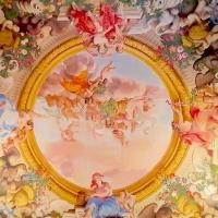 Palazzo Pepoli Campogrande - Sala Felsina soffitto affrescato - Opi1010 - Bologna (BO)