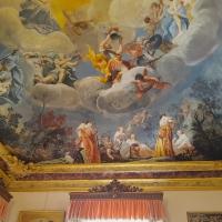 Palazzo Pepoli Campogrande - Sala dell'Olimpo dettaglio soffitto affrescato - Opi1010 - Bologna (BO)