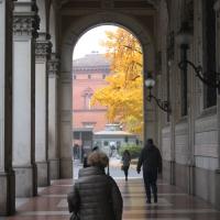 Portico di Via Farini in Autunno - Matteo Santori - Bologna (BO)