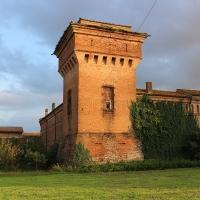 Selva Malvezzi 1 - Rosapicci - Molinella (BO)