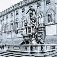 Nettuno - Al Zigant - Vanni Lazzari - Bologna (BO)