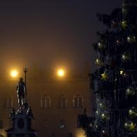 Nettuno inverno - Anita.malina - Bologna (BO)