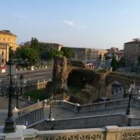 Scheletro del passato - Marmarygra - Bologna (BO)