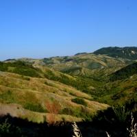 immagine da Parco Sabbiuno