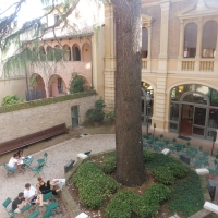 Biblioteca Comunale - dettaglio giardino - Maurolattuga - Imola (BO)