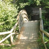 Parco delle Acque Minerali - ponte - Maurolattuga - Imola (BO)