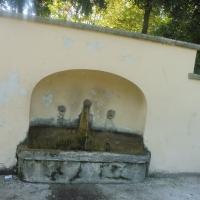 Parco delle Acque Minerali - dettaglio fontana - Maurolattuga - Imola (BO)