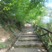 Parco delle Acque Minerali - scalinata 2 - Maurolattuga - Imola (BO)