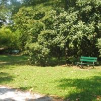 Parco delle Acque Minerali - dettaglio panchina - Maurolattuga - Imola (BO)