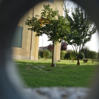 Terracini2 - Tdbo70 mazzo05 checco08 - Sala Bolognese (BO)