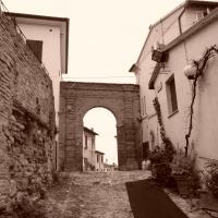"""Arco """"Spada"""" - Giovanni1984 - Montiano (FC)"""