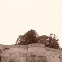 Rocca Malatestiana di Montiano - Giovanni1984 - Montiano (FC)