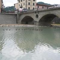 Ponte Vecchio Santa Sofia - Sansa55 - Santa Sofia (FC)