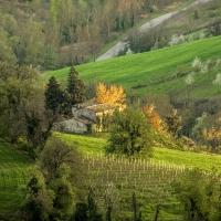 Luci del tramonto sul Fondovalle Rubicone - Marco della pasqua - Savignano sul Rubicone (FC)