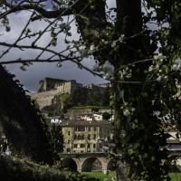 CASTROCARO-TERRA DEL SOLE--4 - STFMIC - Castrocaro Terme e Terra del Sole (FC)