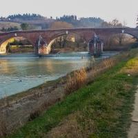 Camminata lungo il fiume - Soniatiger - Cesena (FC)