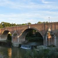 Ponte Vecchio 03 - Gloria Molari - Cesena (FC)