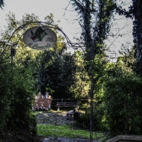 CESENA-Villa Silvia-6045 - STFMIC - Cesena (FC)